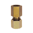 Female Gauge Adaptor (Compression Type)
