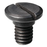 Lockscrews (LS)